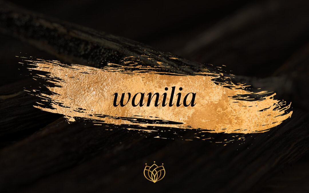 Wanilia w perfumach