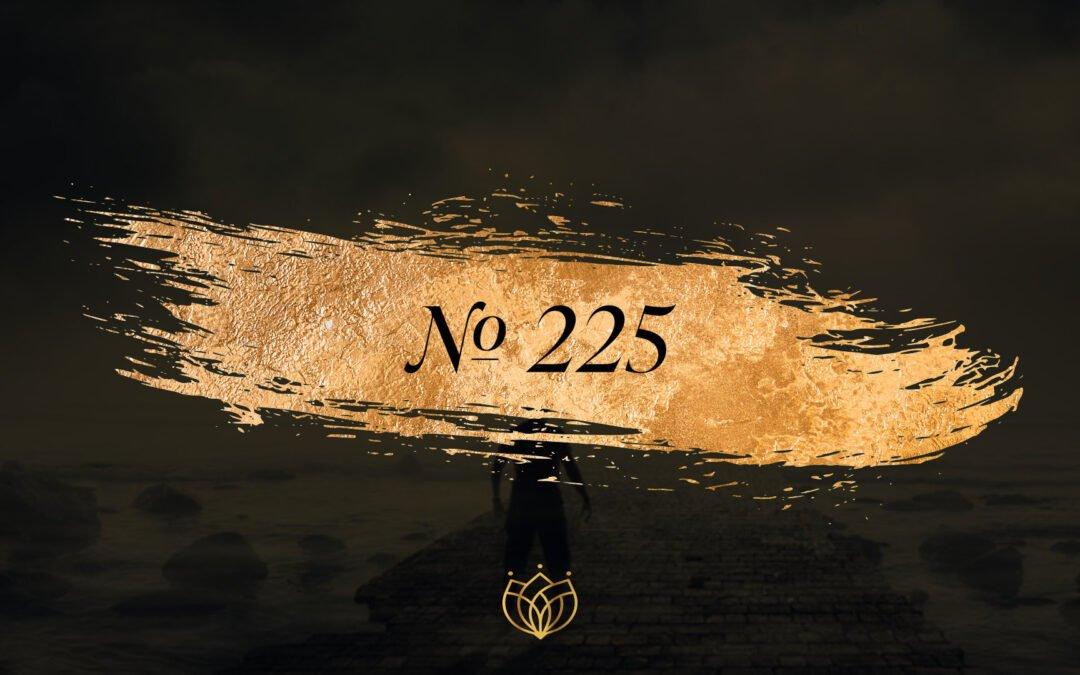#225 Refan Opium/YSL