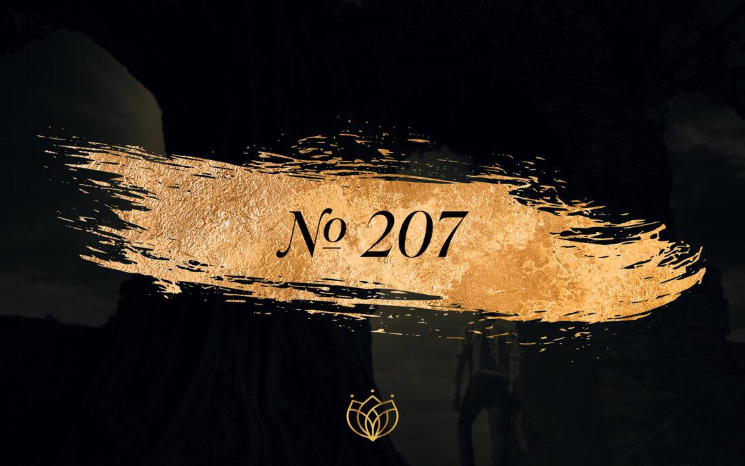 #207 Refan/Egoiste Chanel
